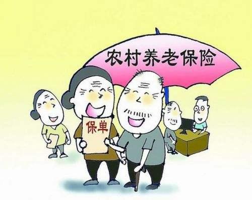 农村养老保险办理流程 第1张