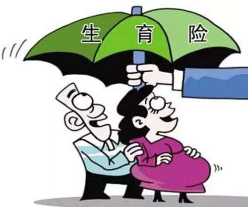 生育保险怎么报销? 第1张