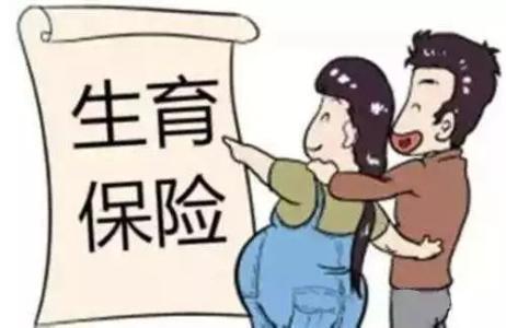 海南省生育保险新规定 第1张